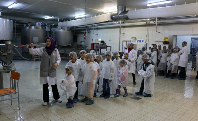 Minik kâşifler süt ürünleri fabrikasını gezdi