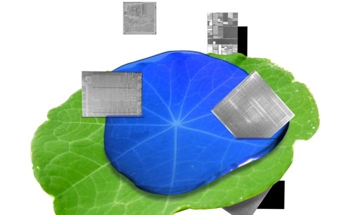 IBM Research, 5 yılda 5 önemli alandaki keşiflerini hızlandıracak
