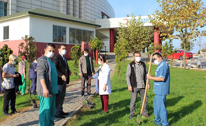 Hastane bahçesine fidan diktiler
