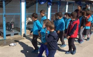Karasulu Öğrencilerden Barınağa Ziyaret