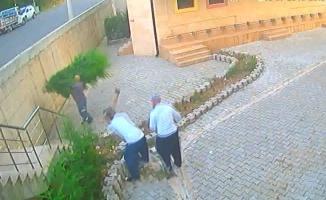 Cami bahçesindeki 31 ağacı 12 dakikada kesip çaldılar