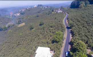 Kestanepınar 'da asfalt çalışmaları tamamlandı