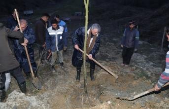 Melen Botanik Vadisi ekonomiye katkı sağlayacak