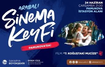 Arabalı sinema gösterimlerinde adres Pamukova