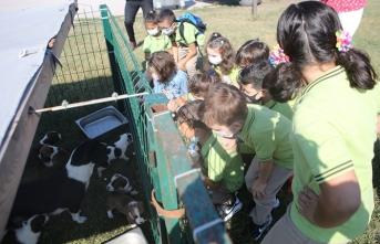 Miniklerden Hayvan Bakımevine anlamlı ziyaret