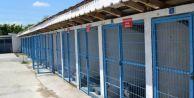 Karasu Belediyesi Hayvan Barınağı' Tam Not