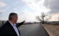 270 yıllık çınar ağacı koruma altına alındı