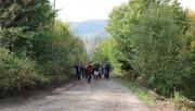 Doğaseverler Hendek'te yürüdü