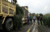 Sakarya'da üretilen fidanları Türkiye'nin her bölgesine göndermeyi hedefliyoruz