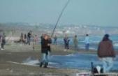 Kalkan Balığı şenliği Mayıs'ta