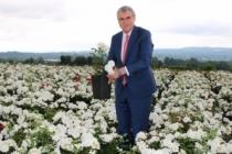 Peyzaj ve Süs Bitkiciliği sektörü Sakarya'da buluşacak