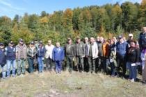 Farklı Ülkelerden Ormancılar Akyazı'daki Gençlik Şöleninde Buluştu