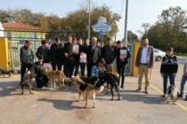 Öğrenciler Hayvan Barınağını Ziyaret Ettiler