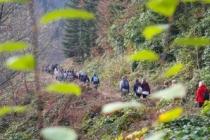 Sonbahar doğa yürüyüşleri sona erdi