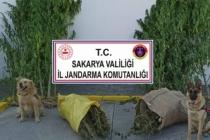 Jandarma, Uyuşturucu Tacirlerine Fırsat Vermiyor
