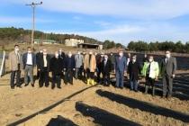 Pamukova'da çilek fideleri toprakla buluşuyor
