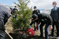21 Mart Ormancılık Haftası Taraklı'da da Kutlandı