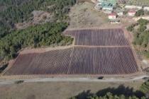 Şehrimizin tarımsal geleceğini garanti altına alıyoruz