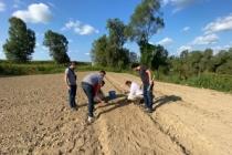 Ferizli'de ilk salepler toprakla buluşturuldu?
