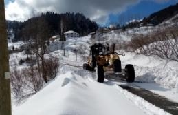 Büyükşehir'den karla etkin mücadele