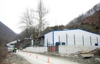 Tesis projesi asırlık ağaca göre yapıldı