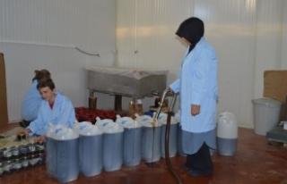Genç Girişimci Kadın Köyde Kurdukları Fabrikadan...