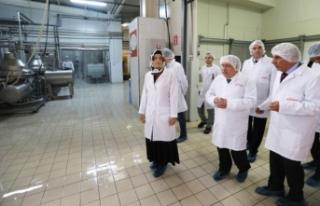 Vali Nayir Sanayi Kuruluşları Ziyaretlerine Devam...