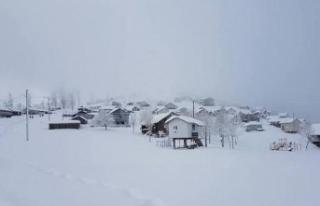 1750 metre yüksekliğindeki dikmen yaylasında kar...
