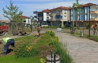 Karasu Belediyesi Çim Biçme Çalışmalarına Devam...