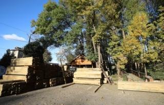 Orman Park yenileniyor