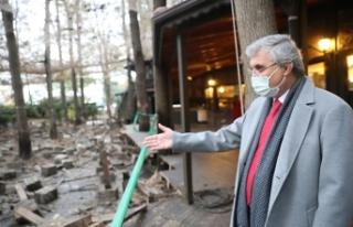 Orman Park'ta restorasyon çalışmaları devam...