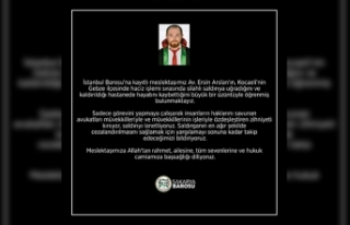 Sakarya Barosu'ndan eylem: Avukatlar duruşmalara...