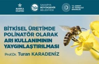 Bitkisel üretimde arı kullanımının yaygınlaşması...