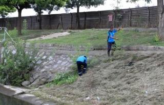 Büyükşehir Çark Deresi çevresini temizliyor