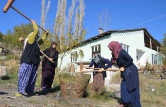 Atalardan Kalan Buğday Dövme Geleneği Sakarya'da Sürüyor
