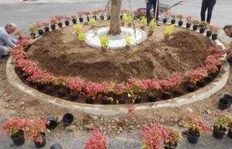 Karasu'da Park Bahçeler Birçok Alanda Çalışmalarına Devam Ediyor