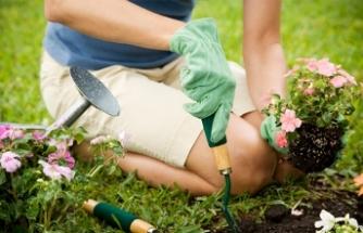 Evde mini hobi bahçesi hazırlamanın püf noktaları