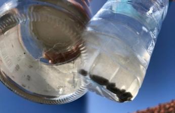 Kocaali'de musluklardan su içilmiyor!