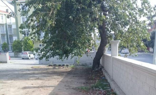 Okul Bahçeleri Yeni Eğitim Öğretim Yılı Öncesi Temizleniyor