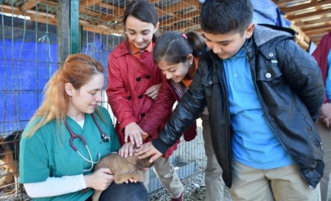 Karasulu Öğrencilerden Hayvan Barınağına Ziyaret