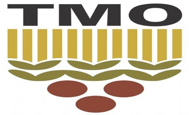 TMO Fındık Alımlarına devam ediyor