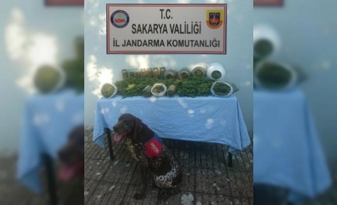 Jandarma'Dan Geçit Yok