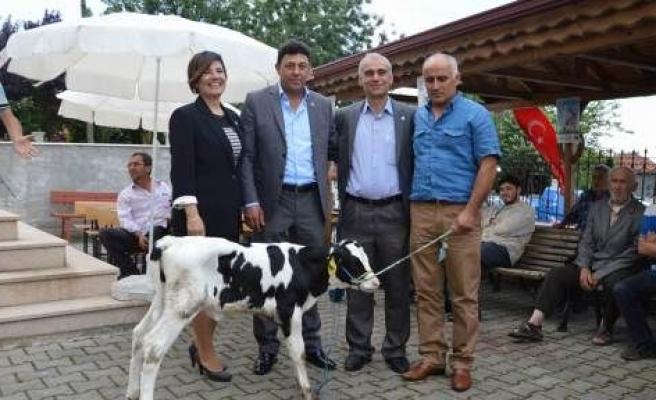 Hakan Candemir Mavi Karadeniz Televizyonunda