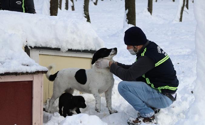 Ekipler Zorlu Kışta Onları Yalnız Bırakmıyor