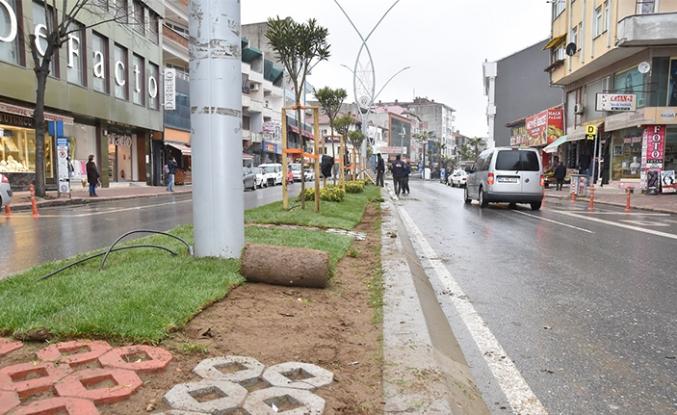 Plaj Caddesi Orta Refüj Yeşilleniyor