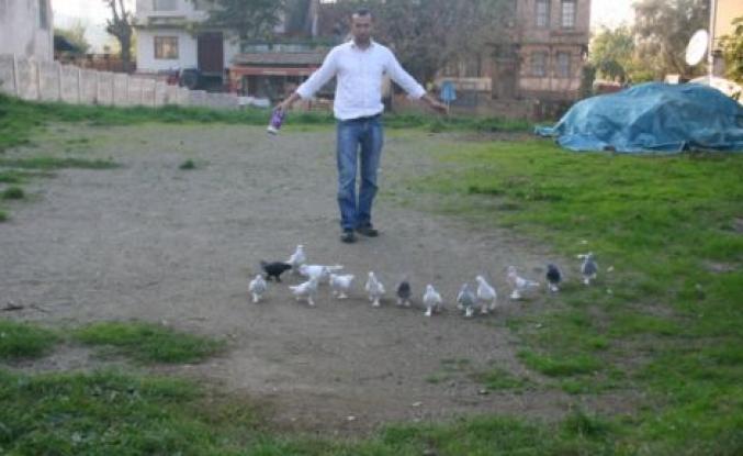 Güvercin Kültürüne Sahip Çıkalım